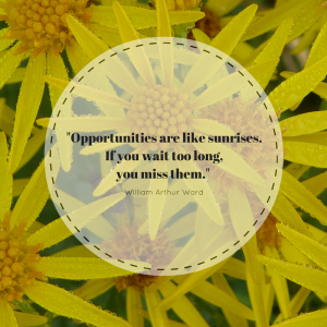 opportunity, seize the day, opportunity knocks,